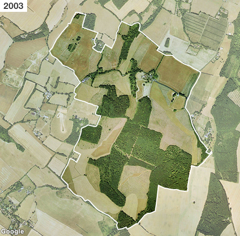 Satellite image of fragmented ancient woodland on Hucking Estate in Kent in 2003