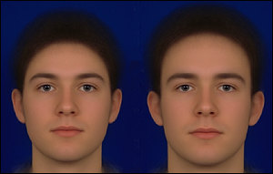 The faces are computer averages: the left face is more feminine, the right more masculine