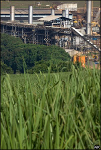 bbc current information posting about biofuels