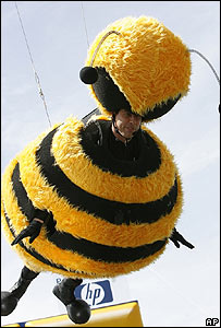 Jerry seinfeld bee costume