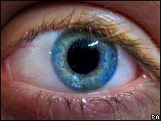 BBC NEWS | Health | Oily fish 'cuts eye disease risk'