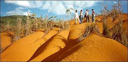 Desertificación provocada por cultivos de coca. Cortesía de DEVIDA.