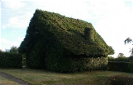 Bbc News In Pictures Your Pictures Artistic Hedges