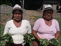 Honorata Díaz y Peregrina Paichucamo