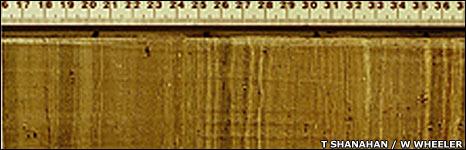 Sediment record