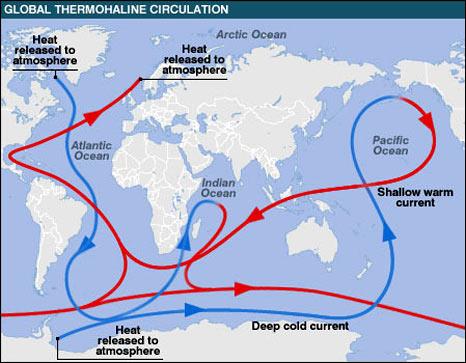 Global thermohaline circulation